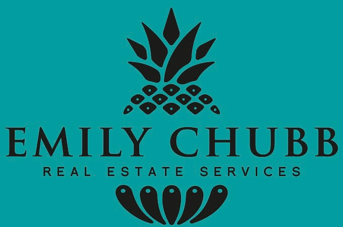 women-owned-business-charleston-emily-chubb-real-estate-services.jpg