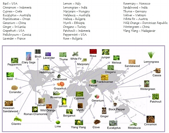 Map of where we source these pure plant extracts from.