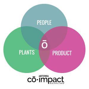 co-impact-sourcing.jpg