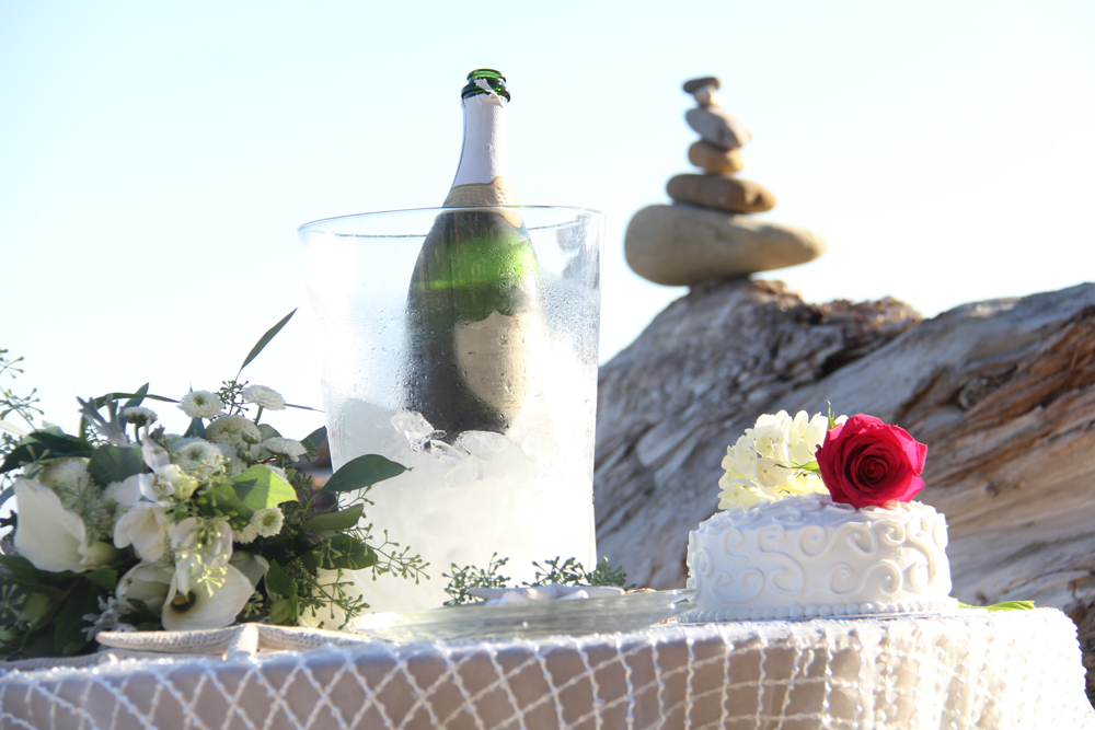 champagne_cake 1.jpg