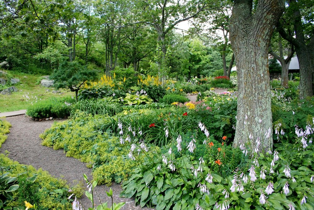Landscape Designer's Guide to Naturalistic Planting for Your Lower Paxton, PA, Backyard