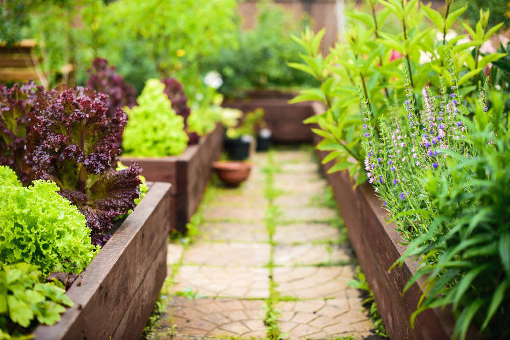Landscaping Ideas for Creating a Vegetable Garden in South Middleton, PA