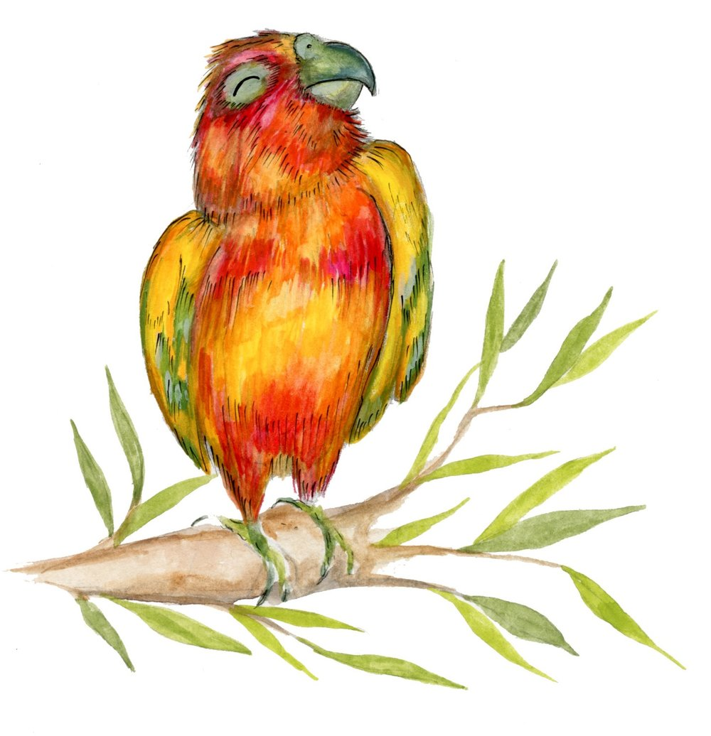 BabyIllustration001-Parrot-300dpi.jpg