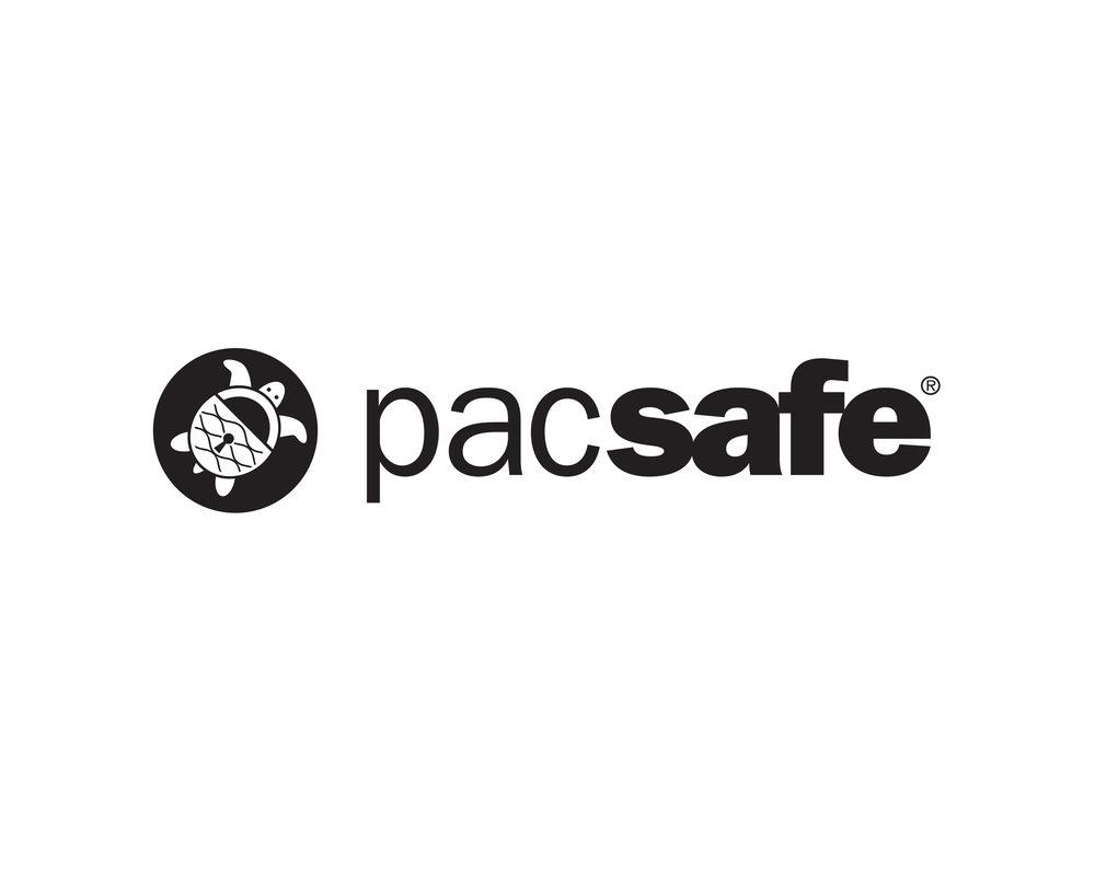 Pacsafe33.jpg