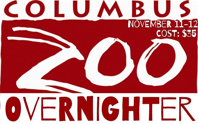 Okay 412...need your input! Let us know if November 11-12 would work for our zoo overnight. #412studentministry #zooovernight