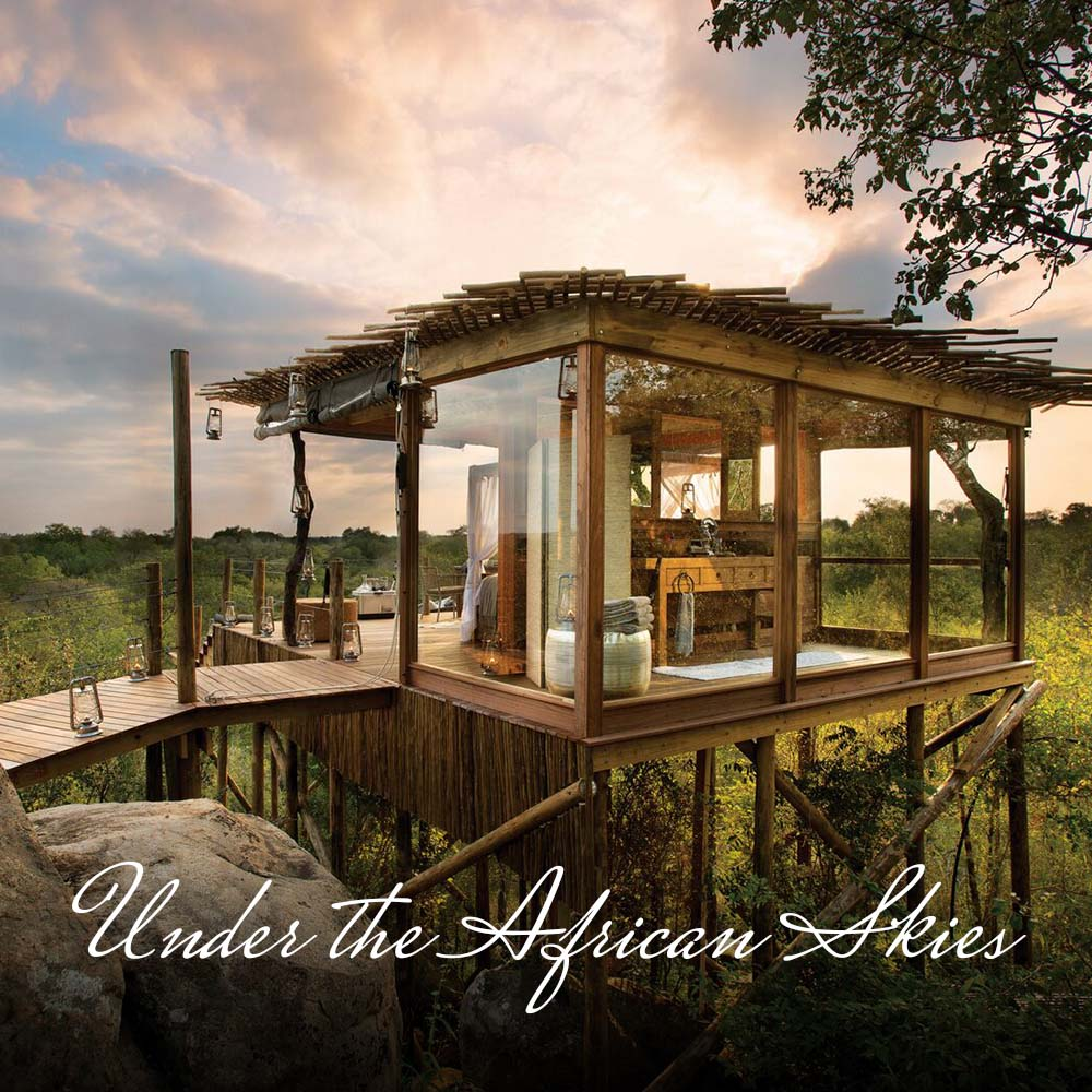Imagine sleeping in a forest or bush  tree-house  or in the desert  under the stars  yet with all the creature comforts; sipping a G&T in the wild whilst watching the  sun set ; having a romantic, candle-lit  bush dinner ; not forgetting the intense excitement of  Big 5 game drives .