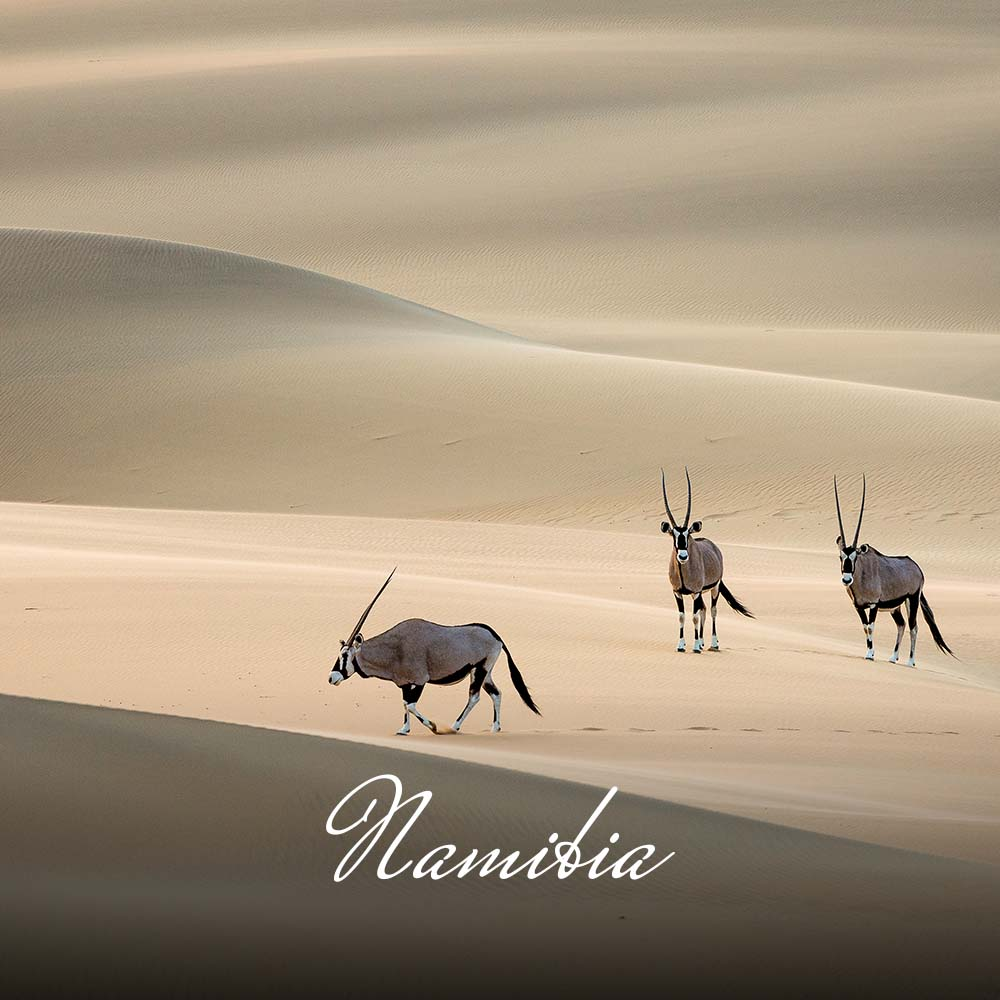 Namibia is an awe-inspiring land of stark contrasts; from the rich red tones of the Namib Dunes to the white fine dust of Etosha Pan; from the rugged walls of the Fish River Canyon and steep mountains beyond, to the mystical Skeleton Coast and Swakopmund. It is undoubtedly one of the most intriguing countries in the world.