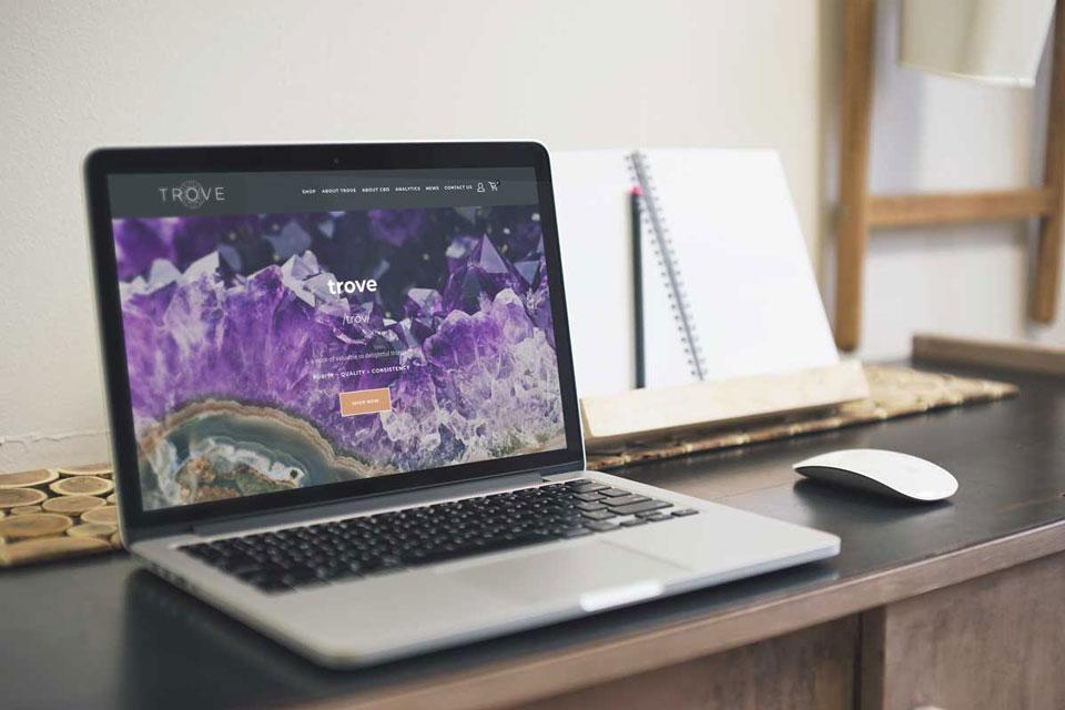 trove-home-page.jpg
