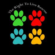rtl-logo_3.png