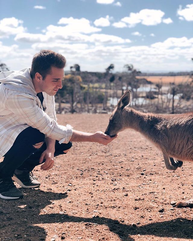 Hanging with the Roos in the outback. 😁 Huge bucket list ✔️amazing experience. #Australia