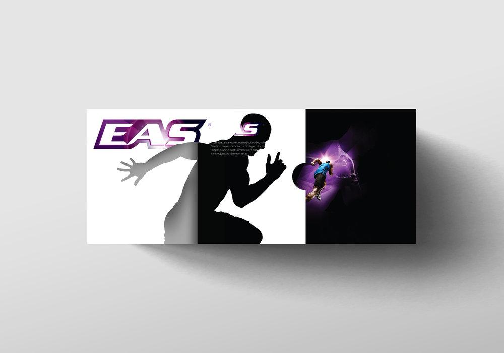 EAS-04.jpg