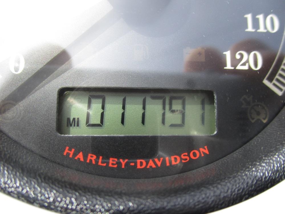 11 H-D FXS 027.JPG