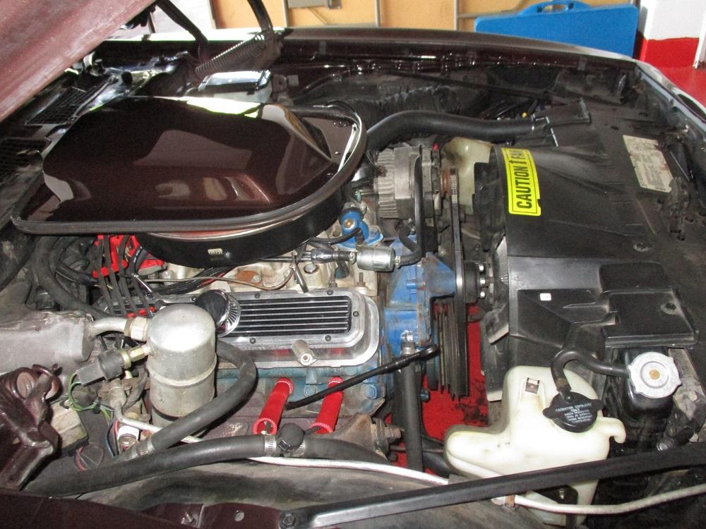 81 Pontiac Trans Am 033.JPG
