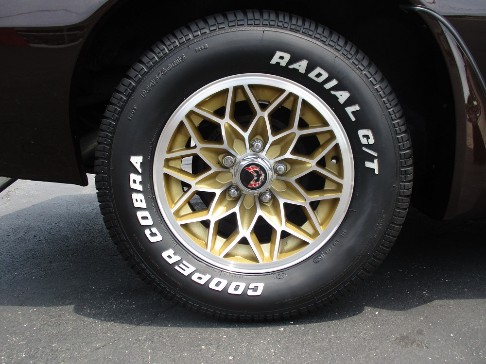 81 Pontiac Trans Am 046.JPG