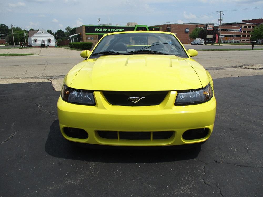 03 Mustang SVT 018.JPG