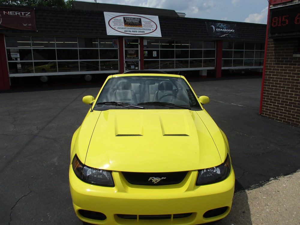03 Mustang SVT 019.JPG