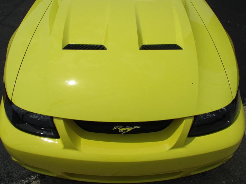 03 Mustang SVT 022.JPG