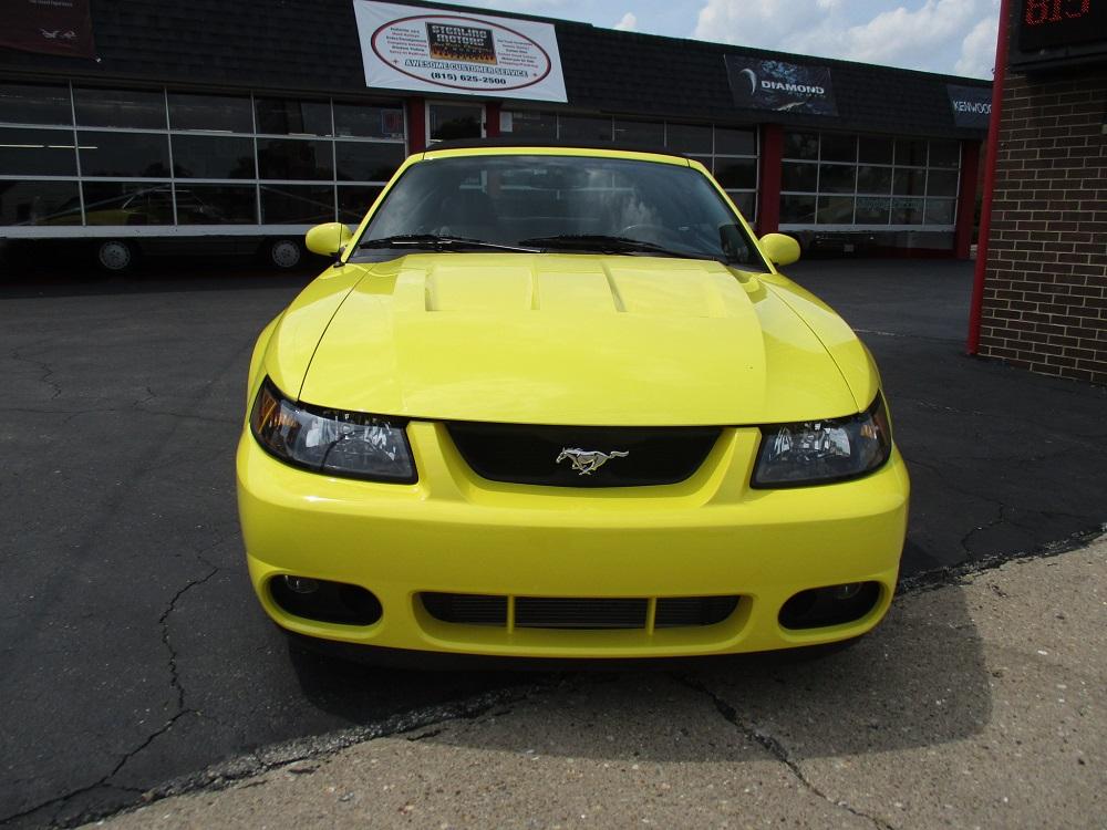 03 Mustang SVT 028.JPG