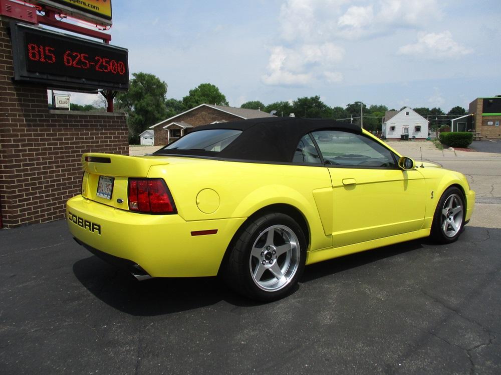 03 Mustang SVT 034.JPG