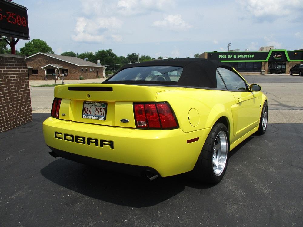 03 Mustang SVT 035.JPG
