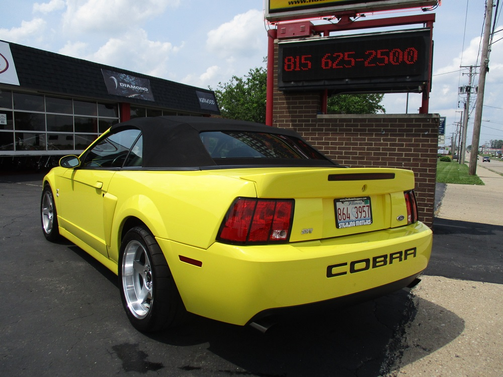 03 Mustang SVT 038.JPG
