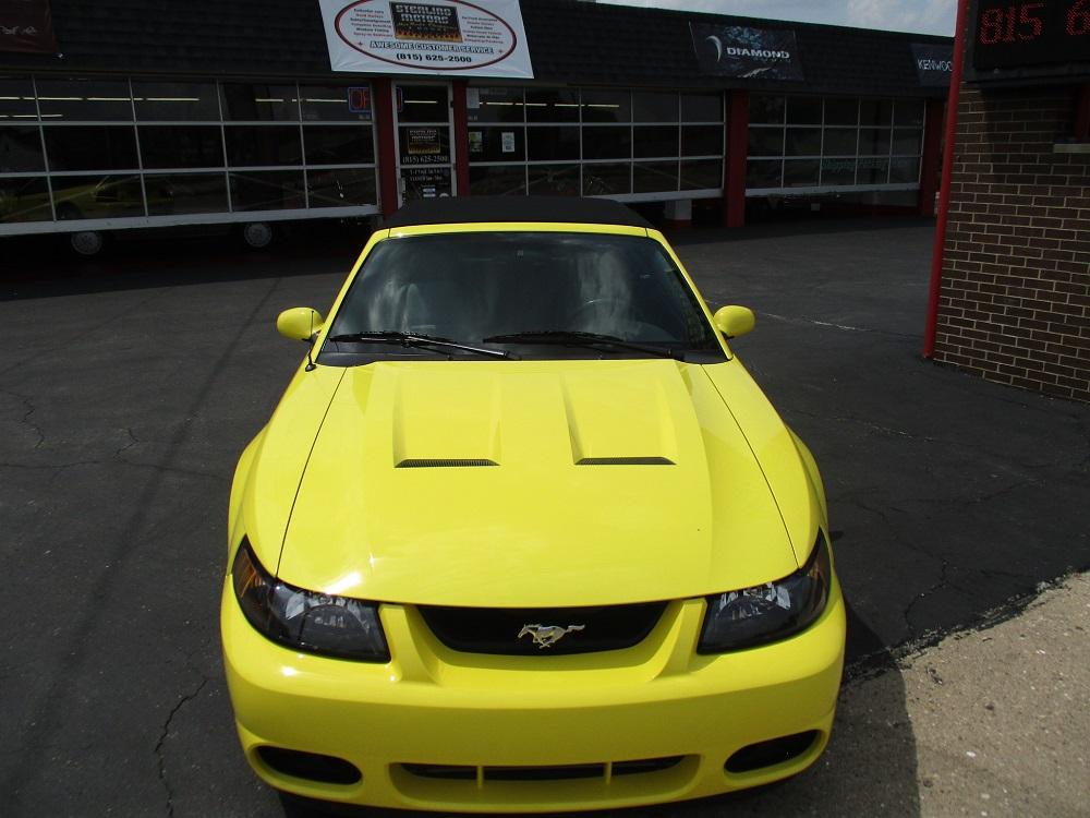 03 Mustang SVT 046.JPG