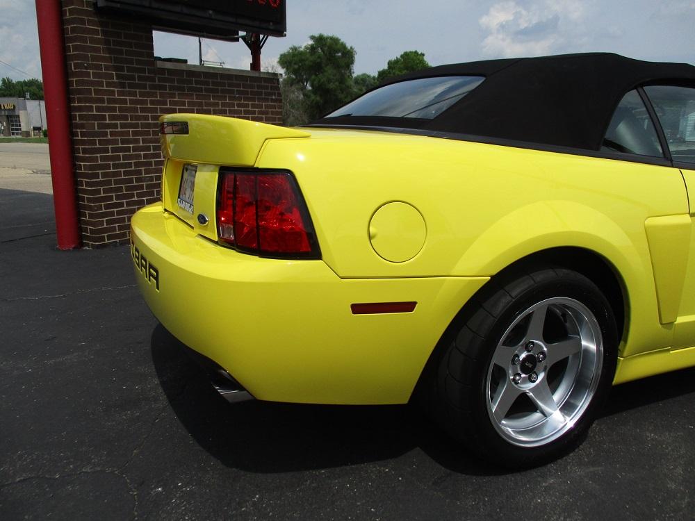 03 Mustang SVT 048.JPG