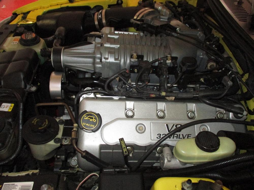 03 Mustang SVT 066.JPG