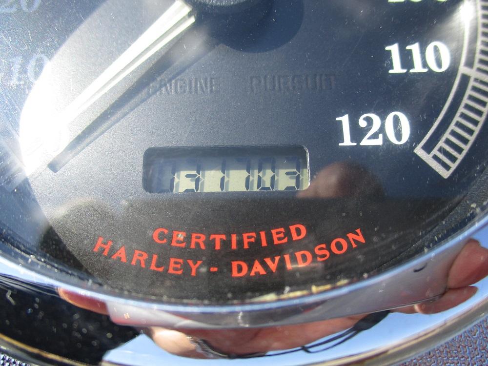 99 HD FXDWG 029.JPG