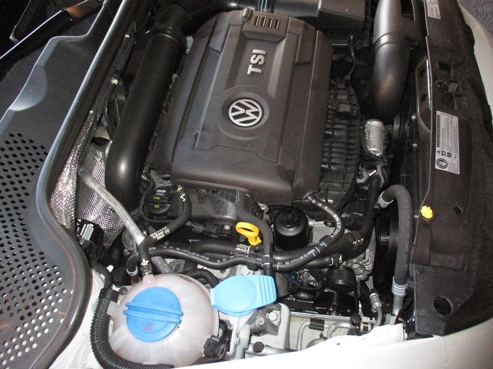16 VW Beetle 042.JPG