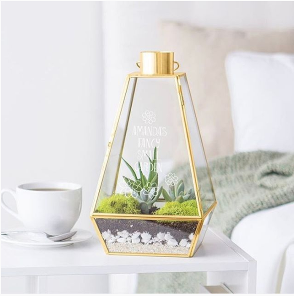 Gold & Glass Terrarium