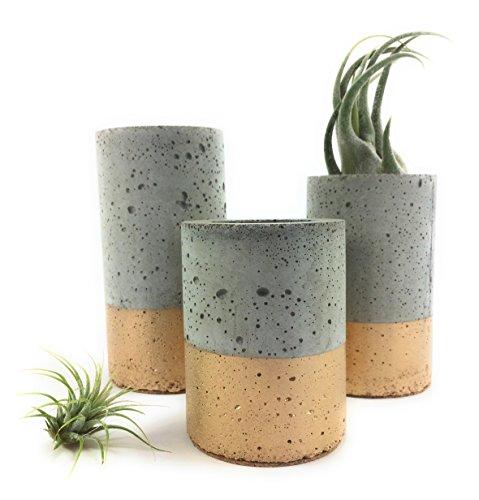 Concrete & Gold Succulent Planters