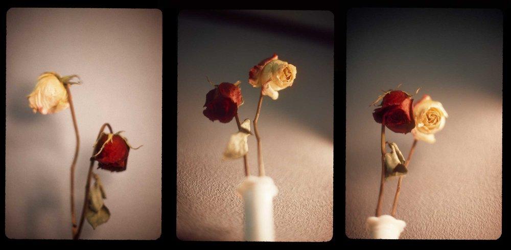 10 Triptych -- Kodachrome.jpg