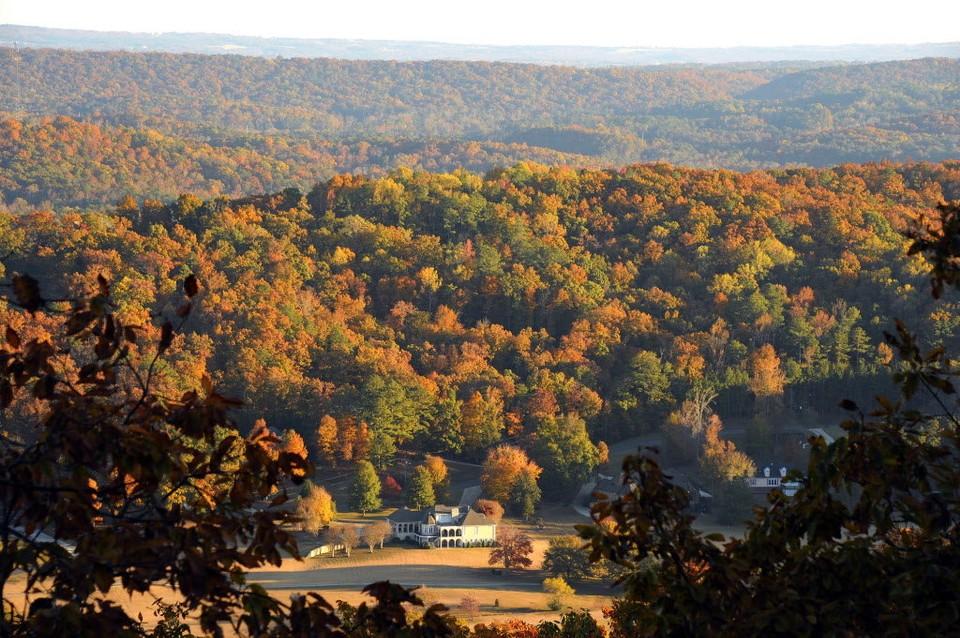 photo by Joe Songer via al.com