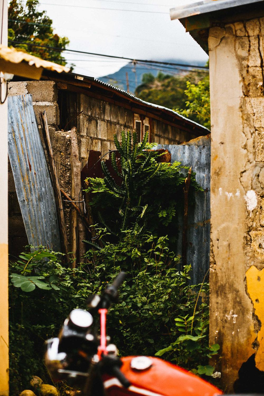RWANDA (1 of 4).jpg