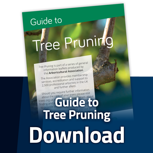 aa_tree_pruning_dl_button.png