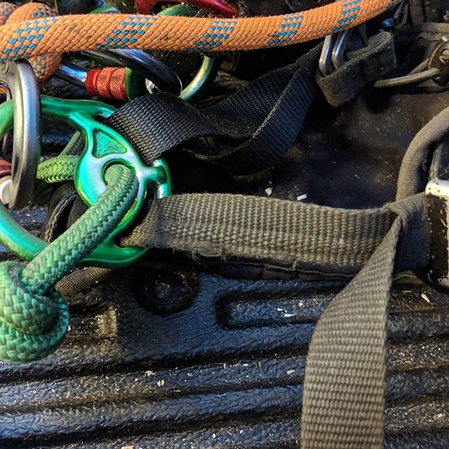 Anyone else get lots of wear on their Treemotion harness? Just failed LOLER :-( I have changed the bridge and hip straps but at over £200 to change the leg straps I might as well get a new harness! I don't mind having to change parts out but when they are so expensive it is not worth doing it. Only had the harness two years.  I have never really like the harness as find it uncomfortable and heavy. What I really like about it is the places to attach all your gear just how you want it.  So after a new harness guys and girls, what is everyones suggestion? . . . . . #treemotion #teufelberger #itssoexpensive #whygodwhy #climbingharness #climbing #treework #arbwork #arboristsofinstagram #arb #arblife #treework #treelife #arboriculture #arborist #forestry #treeclimbing #treeworker #treeclimber