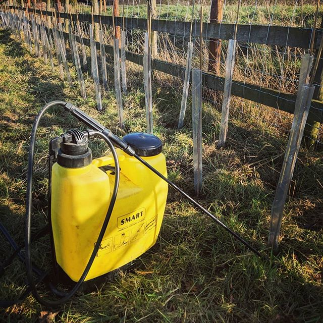 Making use of the good weather and out spraying around the newly plated hedge to keep the new grass from swamping the whips. . . . . #spraying #knapsack #careandattention #arbwork #arboristsofinstagram #arb #arblife #treework #treelife #arboriculture #arborist #treeworker