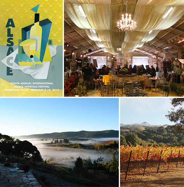 Photos Courtesy of Anderson Valley Winegrowers Association and the International Alsace Varietals Festival