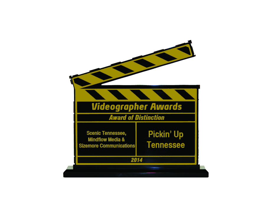 Award of Distinction, 2014 Videographer Awards