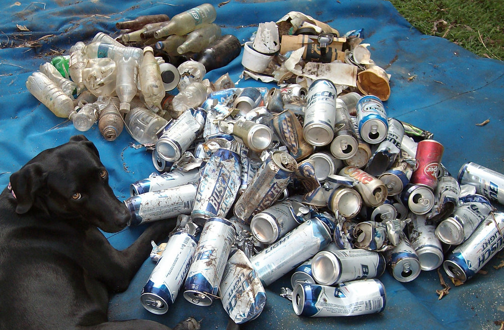 This assortment of litter—overwhelmingly bottles and cans—was collected along 100 feet of roadside in Wilson County in 2013.