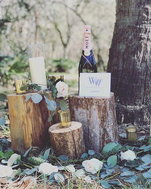 Congratulations to the newlyweds, Mr. & Mrs. Aaron Harder🥂We can't wait to see more from your dreamy wedding day✨ . . . #woodsandweddings #weddinginthewoods #floridawedding #floridabarnwedding #barnweddingvenue #bohochicwedding #moetchandon #eucalyptuswedding #blushroses