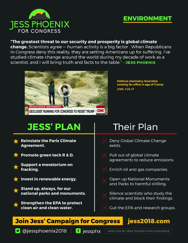 JessPhoenix_Environment_TChart_v2_jpg.jpg