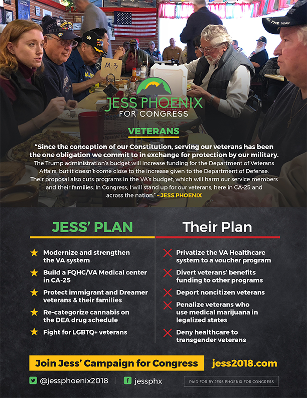 Click Here for Details on Jess' Veterans Platform