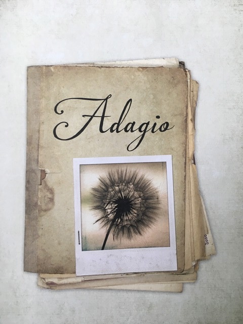 adagio image for web.jpg