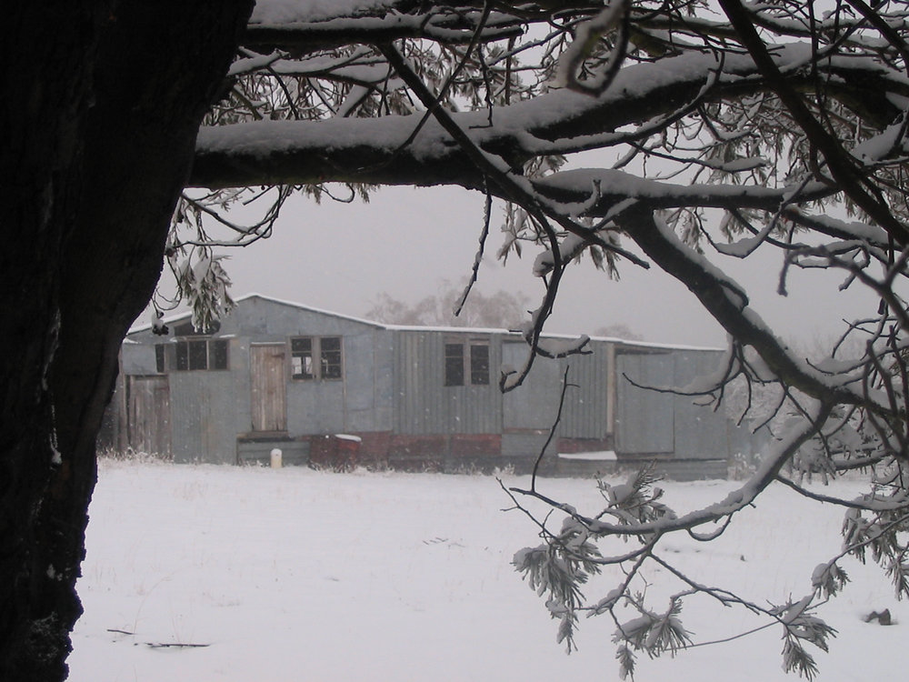 woolshed in snow.jpg