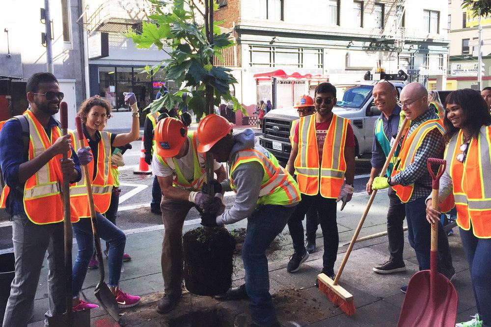 Tree Planting with  ZenDrive  volunteers