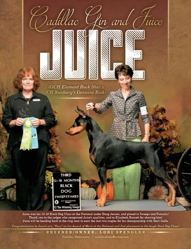 Juice Natl Ad.jpg