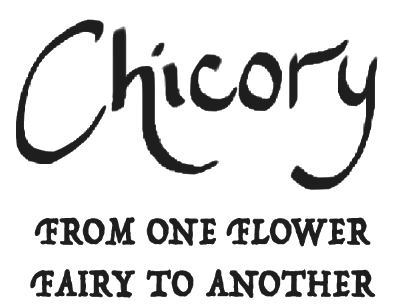 Chicory Design Co.