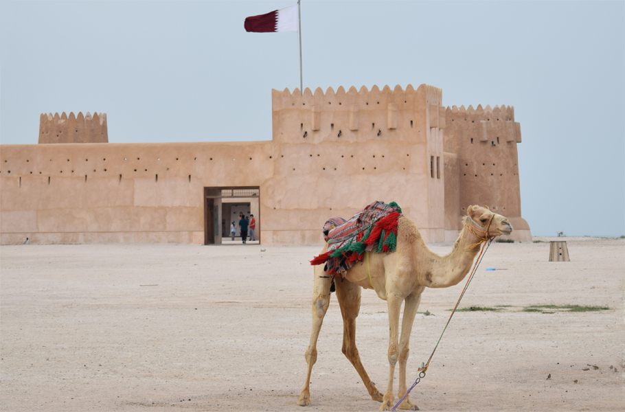 Al Zubarah Fort and camel